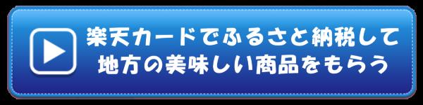 p=1281 楽天カード ボタン_9